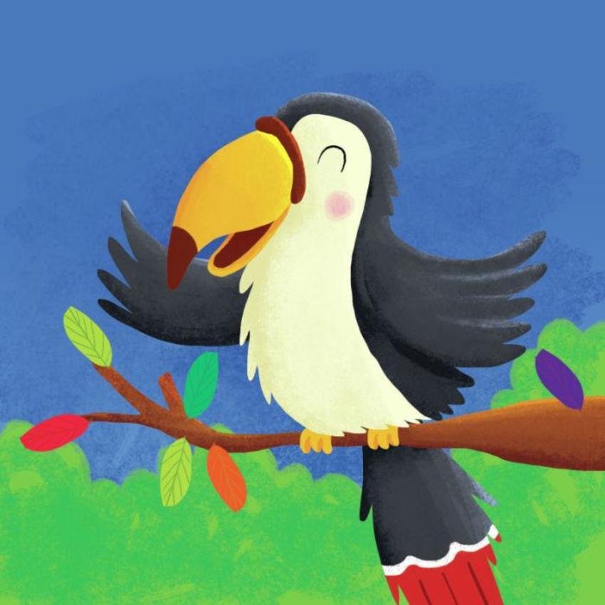 Toucan Copy