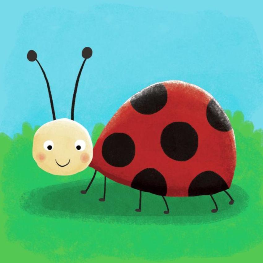 Ladybird Copy