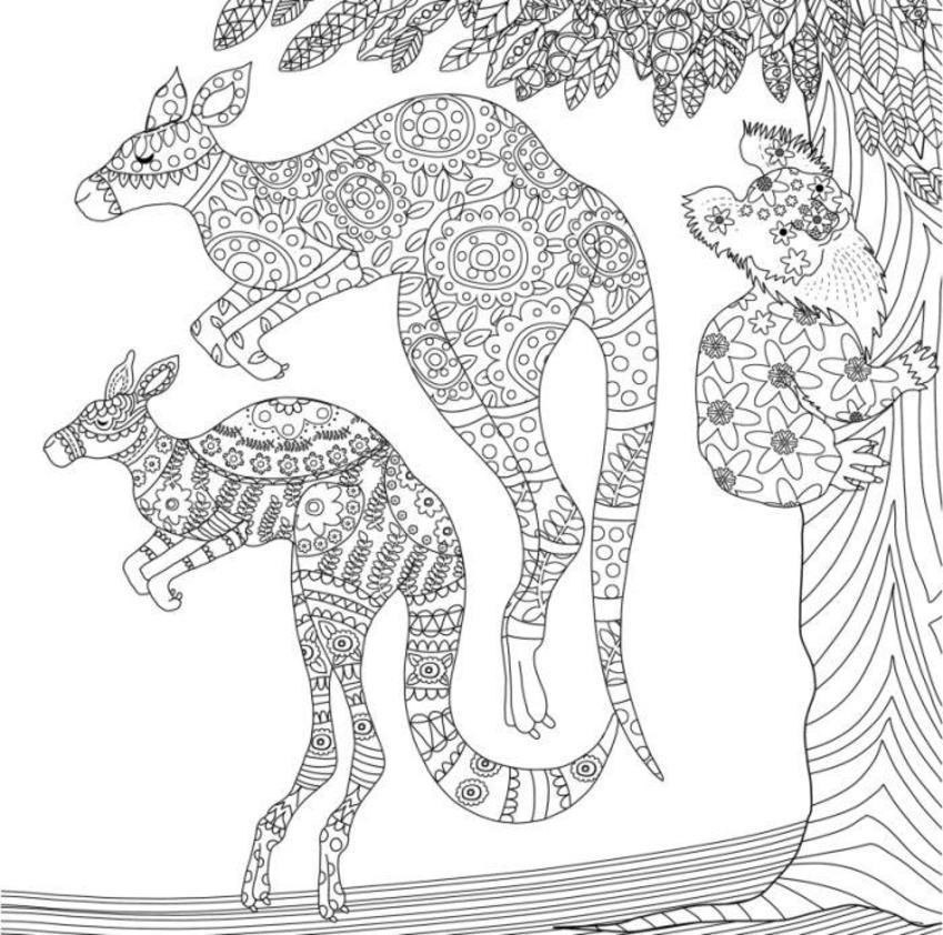 Line Drawing Kangaroos