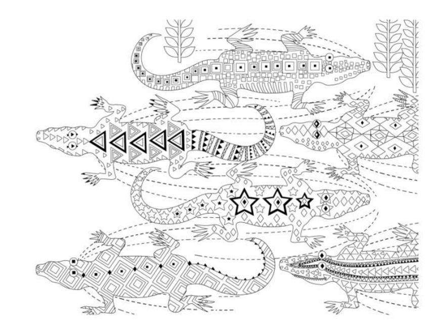 Line Drawing Crocodiles