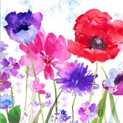 poppy-anemones-screen-shot-png