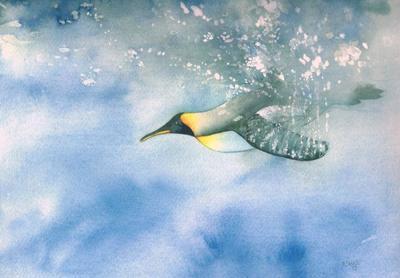 penguin-water