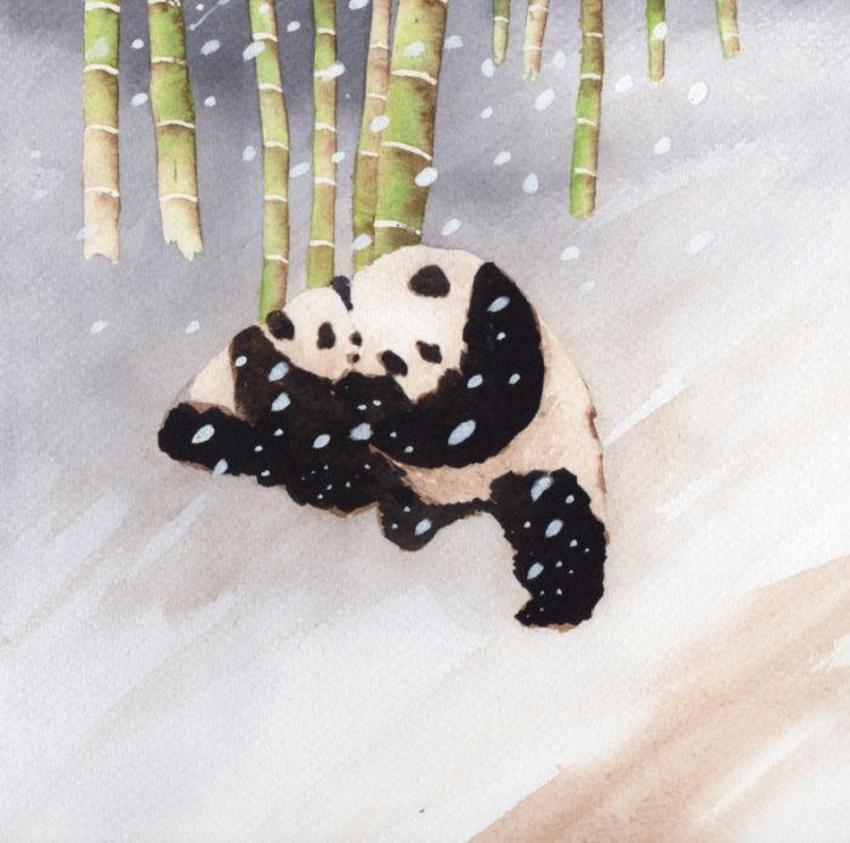 Panda Snow Cute