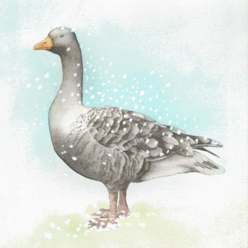 Christmas Goose Snow