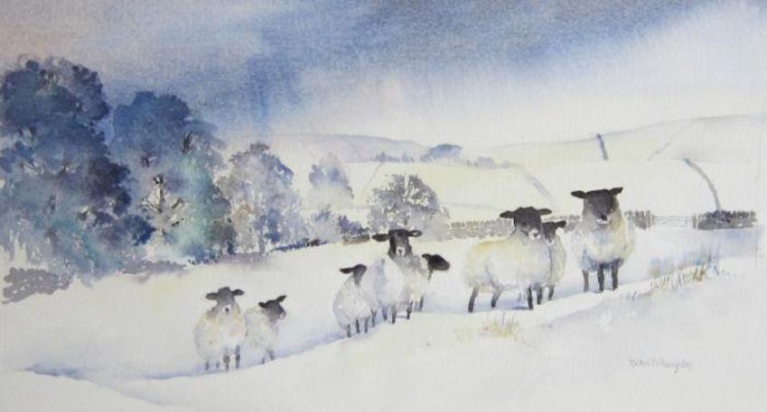 Snowy sheep.jpg