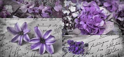 flowers-purple-210
