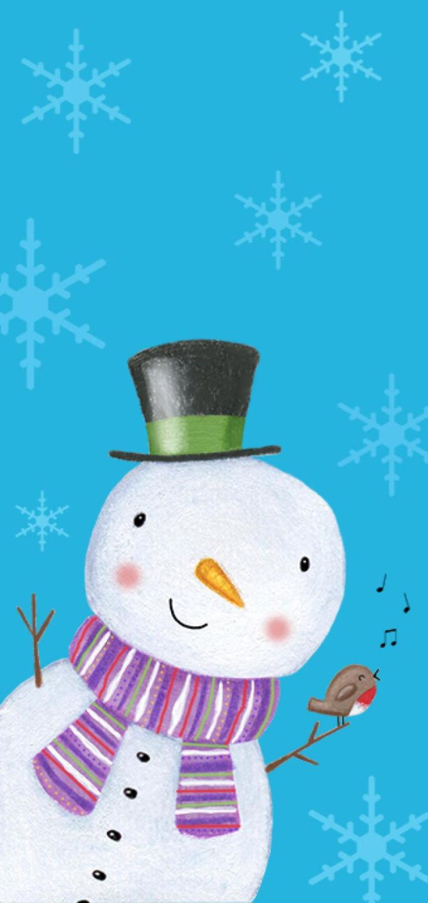 Christmas Snowman Robin Snowflakes