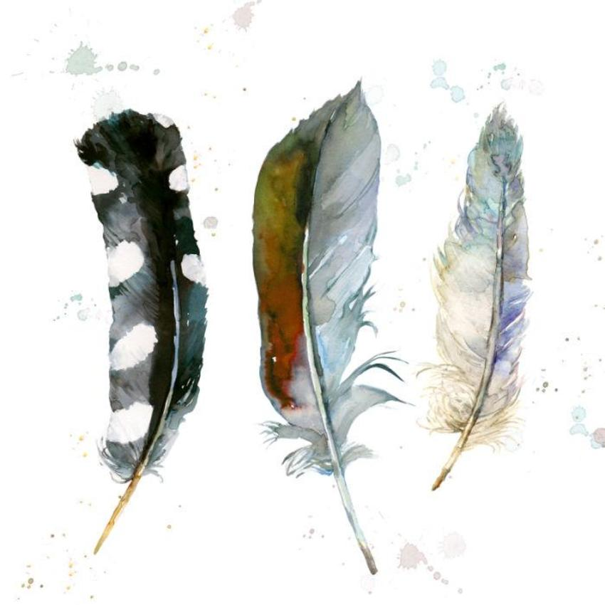 SQUARE 3 Mixed Feathers