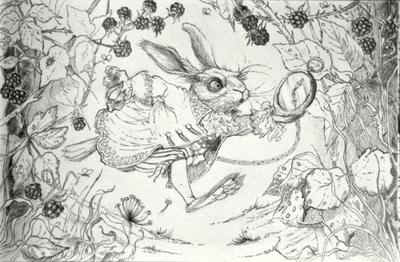 white-rabbit-jpg