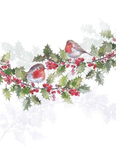 darren-pinder-robin-holly-jpg