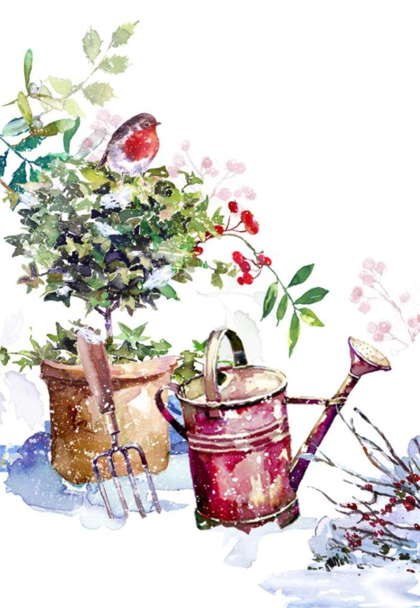 Robins Watering Can & Ivy Design