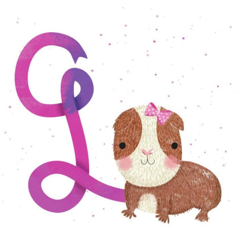 Guinea Pig - Gina Maldonado