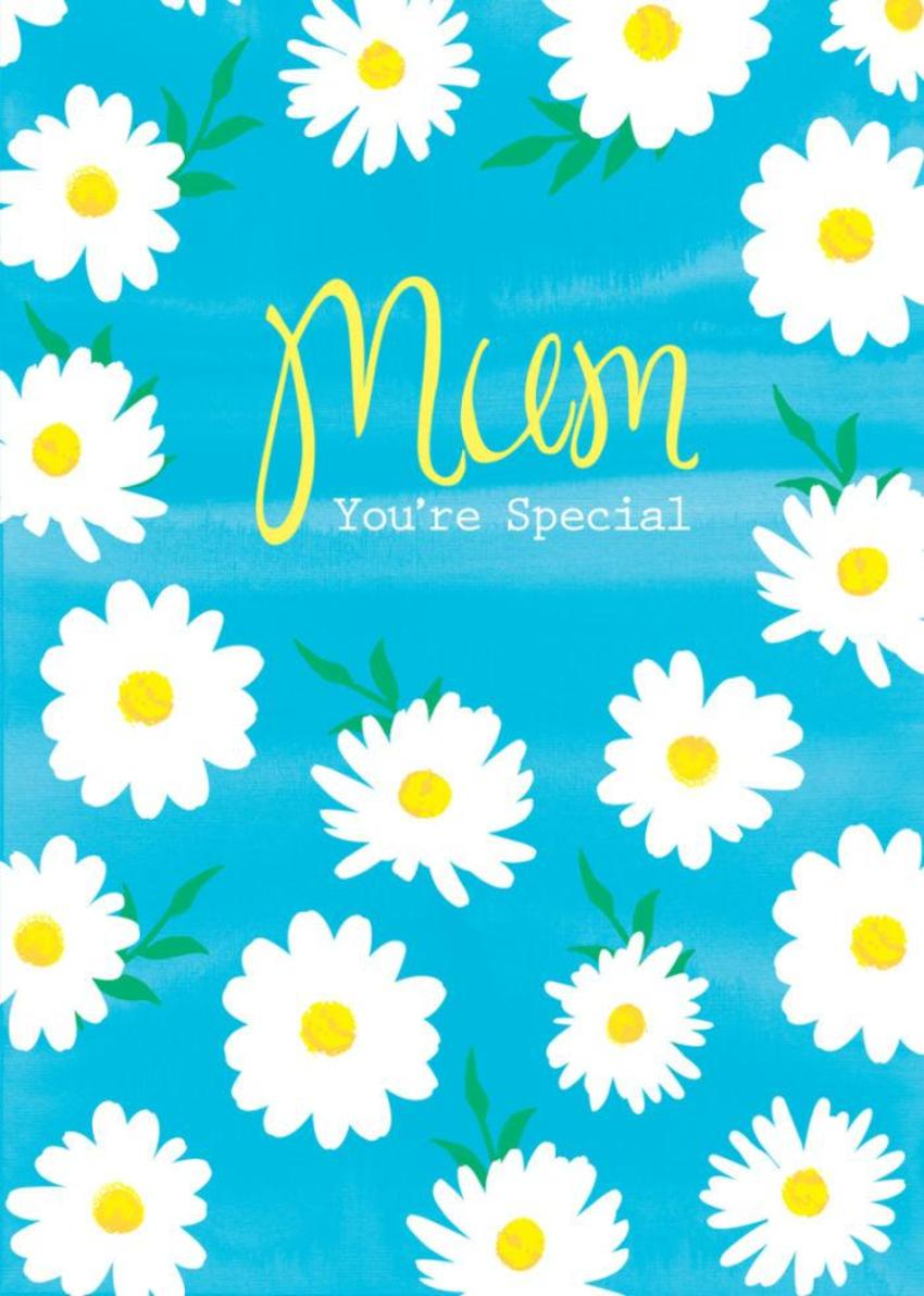 Female Birthday Mothers Day Thank You Get Well Thinking Of You Floral Flowers Daisies On Blue Background