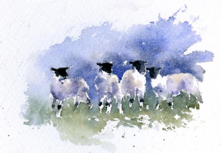 4 Lambs