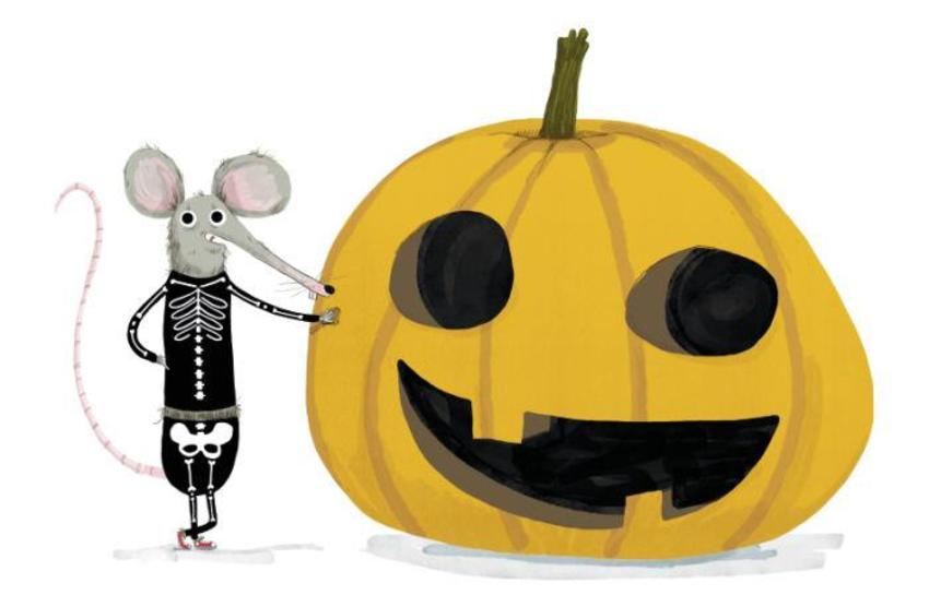 Halloween Cute Mouse Pumpking Skeleton Costume Funny