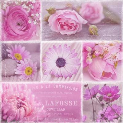 flowers-pink-206
