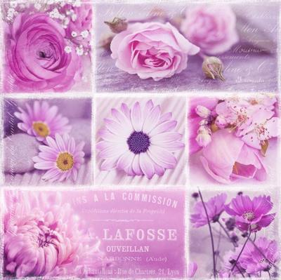 flowers-pink-307