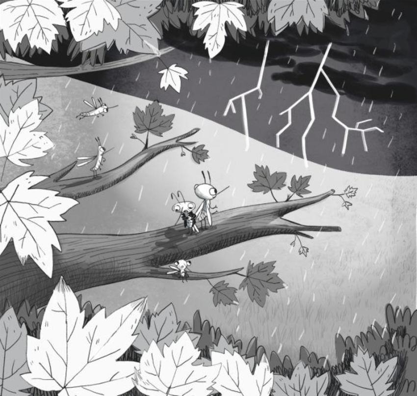 Blackandwhite Mosquito Bugs Fiction Chapterbook Storm Leaves Tree