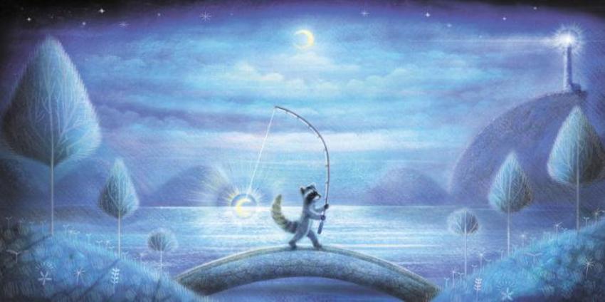 Raccoon And The Moon 2