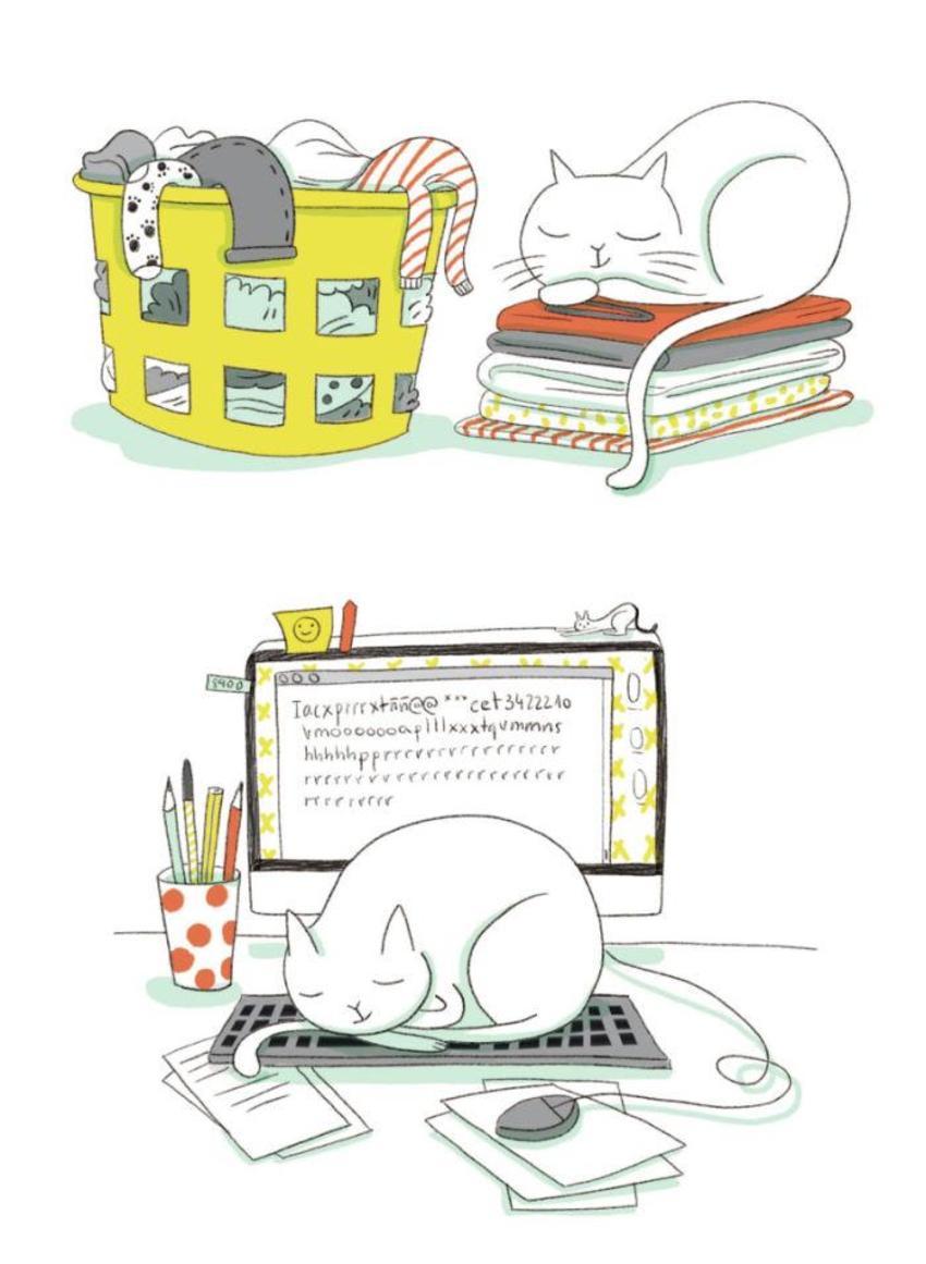 Cat Computer Clothes Desk Sleeping Pets