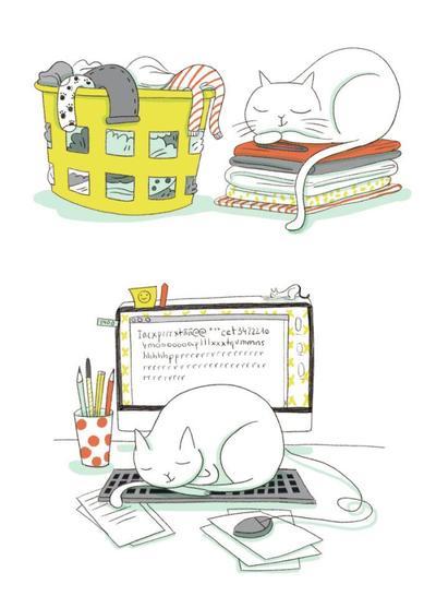 cat-computer-clothes-desk-sleeping-pets