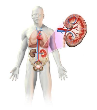 info-medical-02-jpg