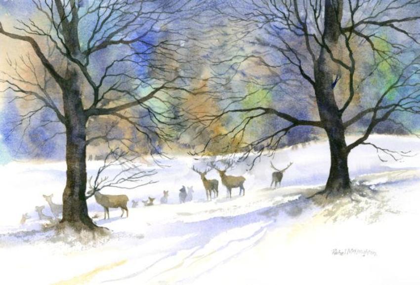 341 - December Deer.jpg