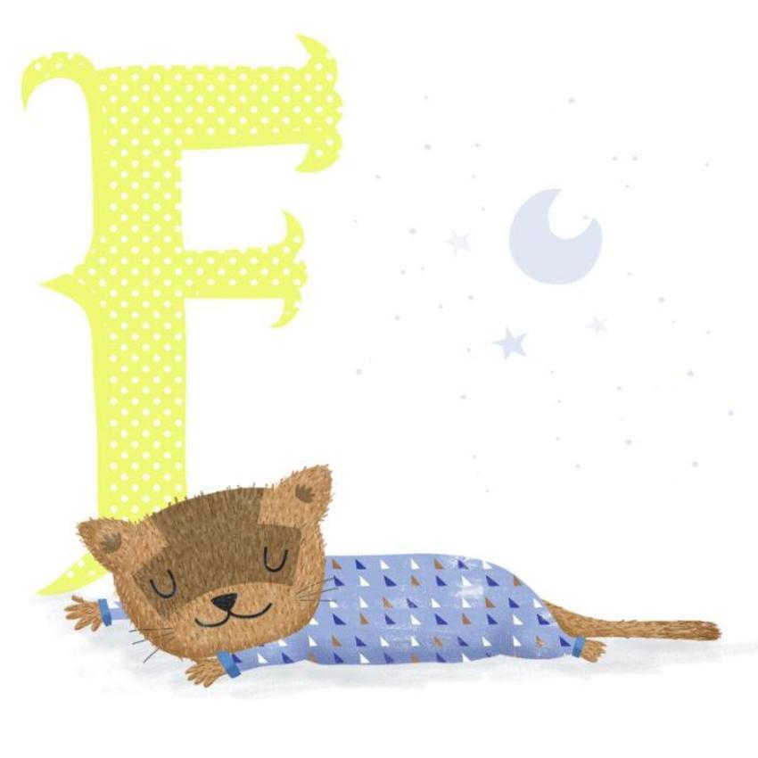 Ferret - Gina Maldonado