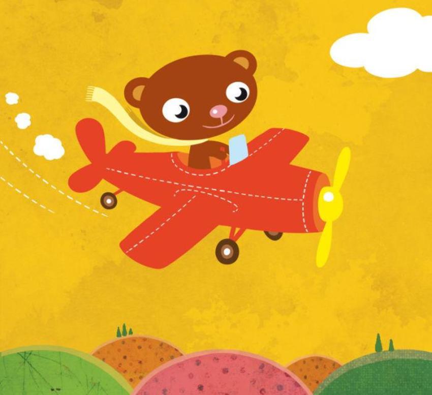 bear on plane.jpg