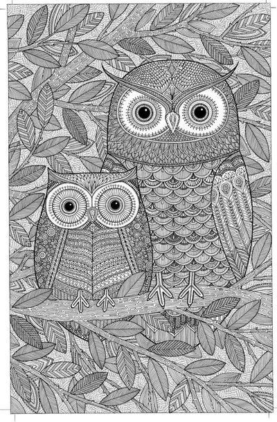 owls-bitmap
