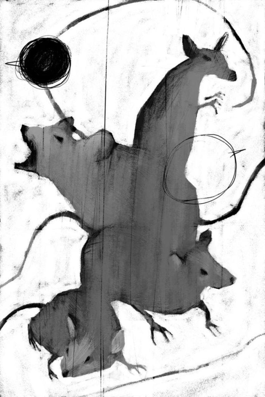 PB45 Rats