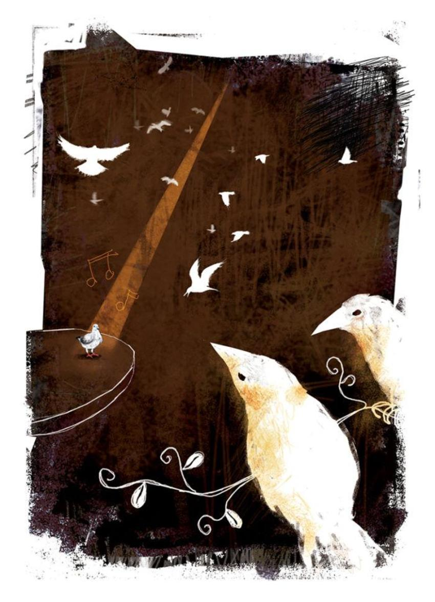 PB126 Birds