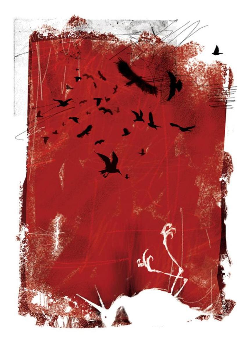 PB125 Birds