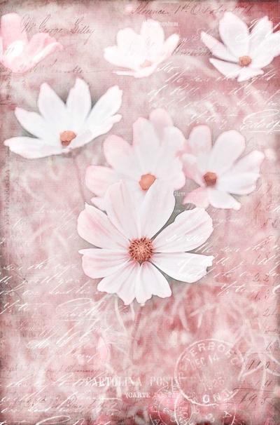 flower-06-14-2