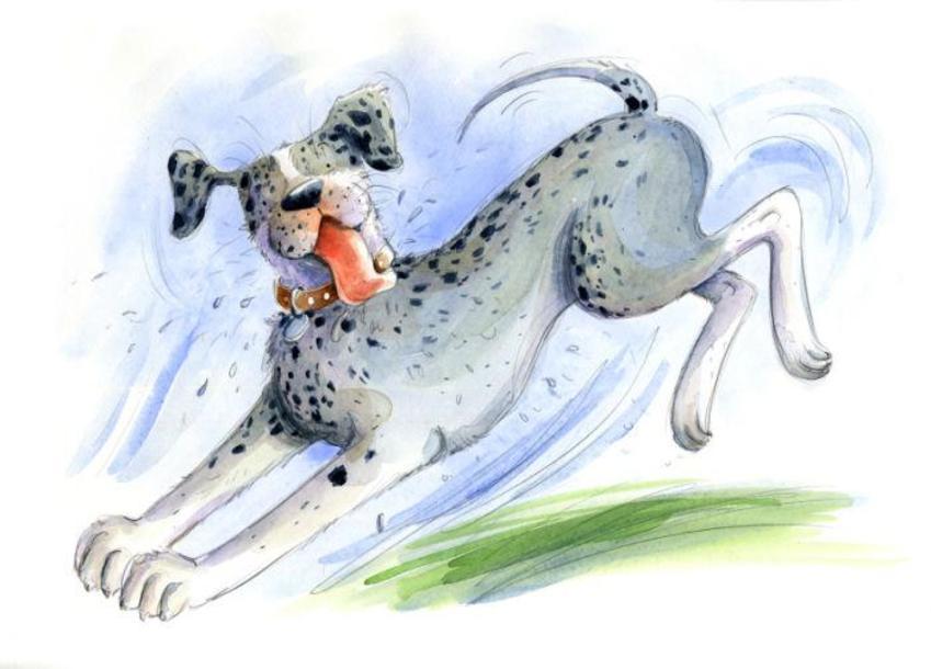 Estellecorke Dog