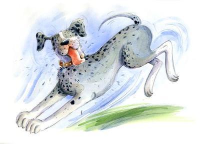 estellecorke-dog