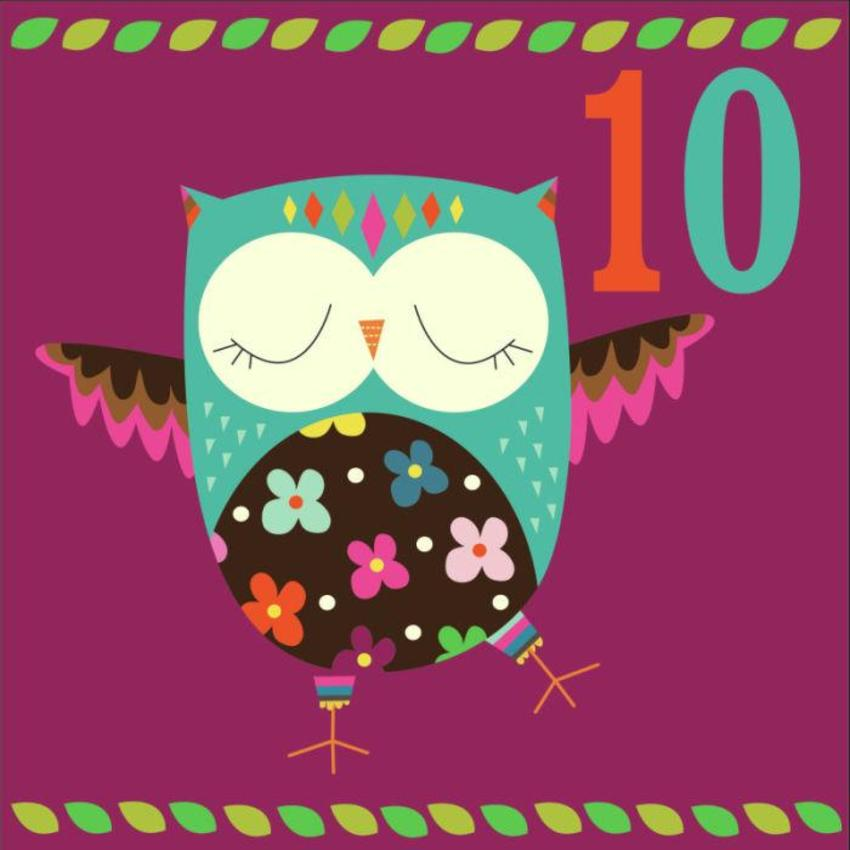 Owl D1-01