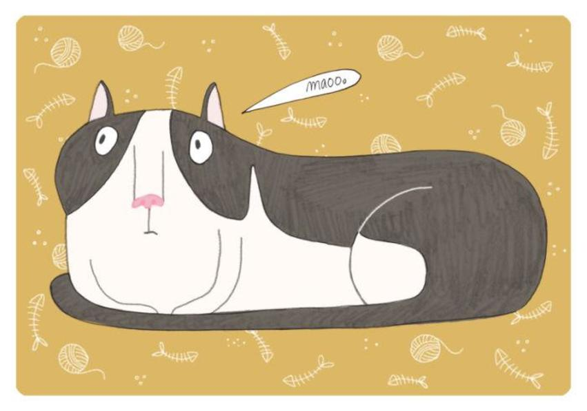 fat cat with yellow background.jpg