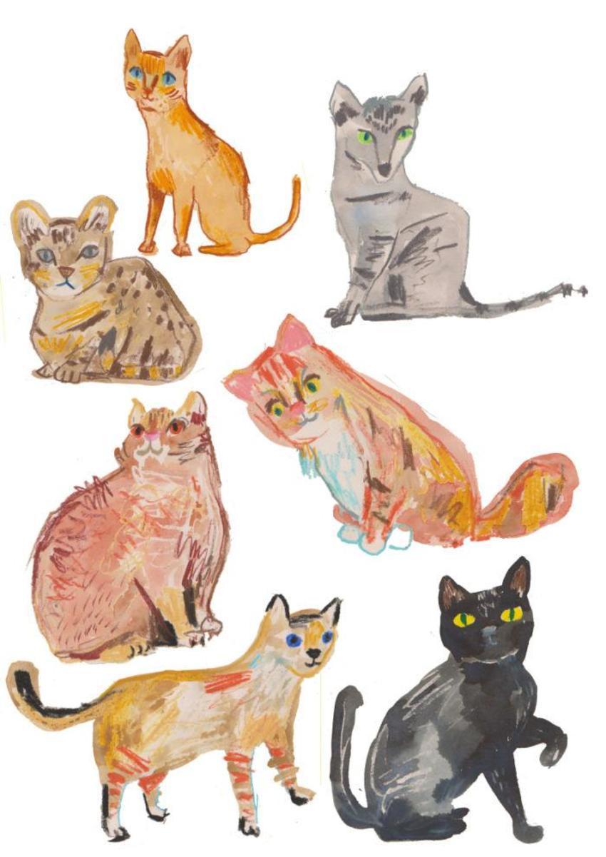 Cat Medly 2 Copy