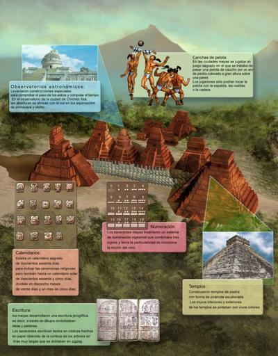 infography3-jpg