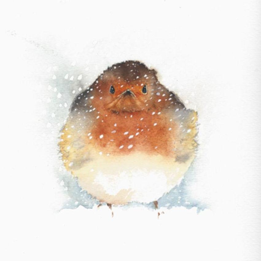 Christmas Redbreast Snow