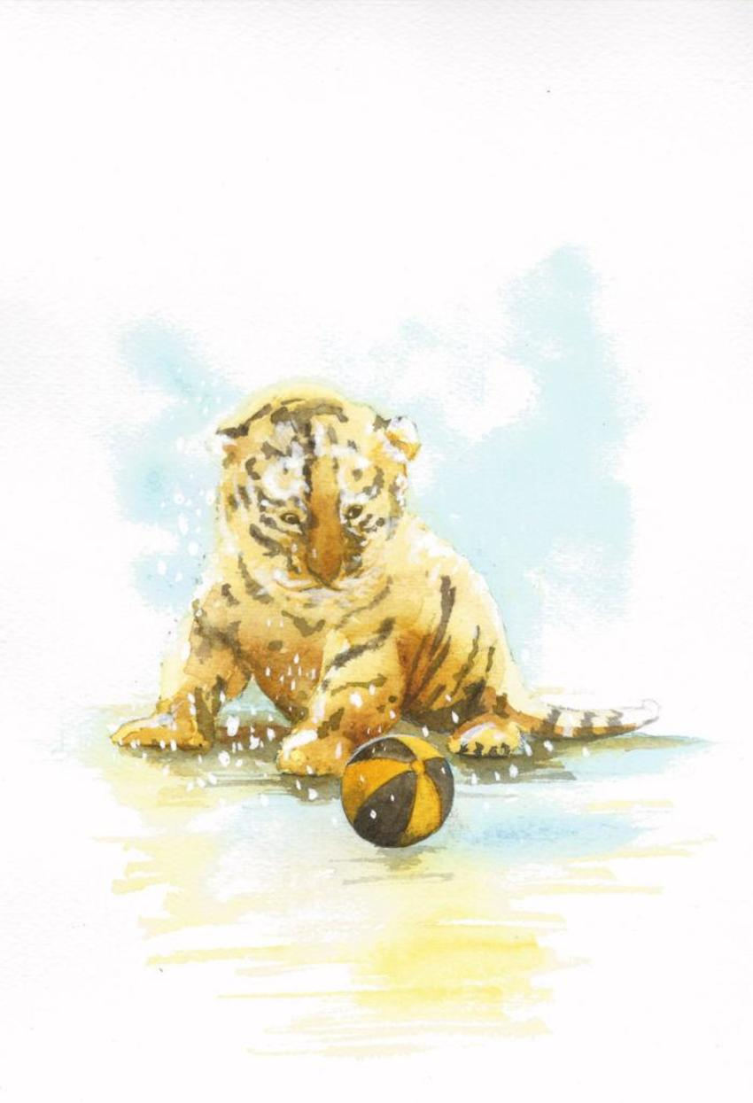 Tiger Cub Snow Ball