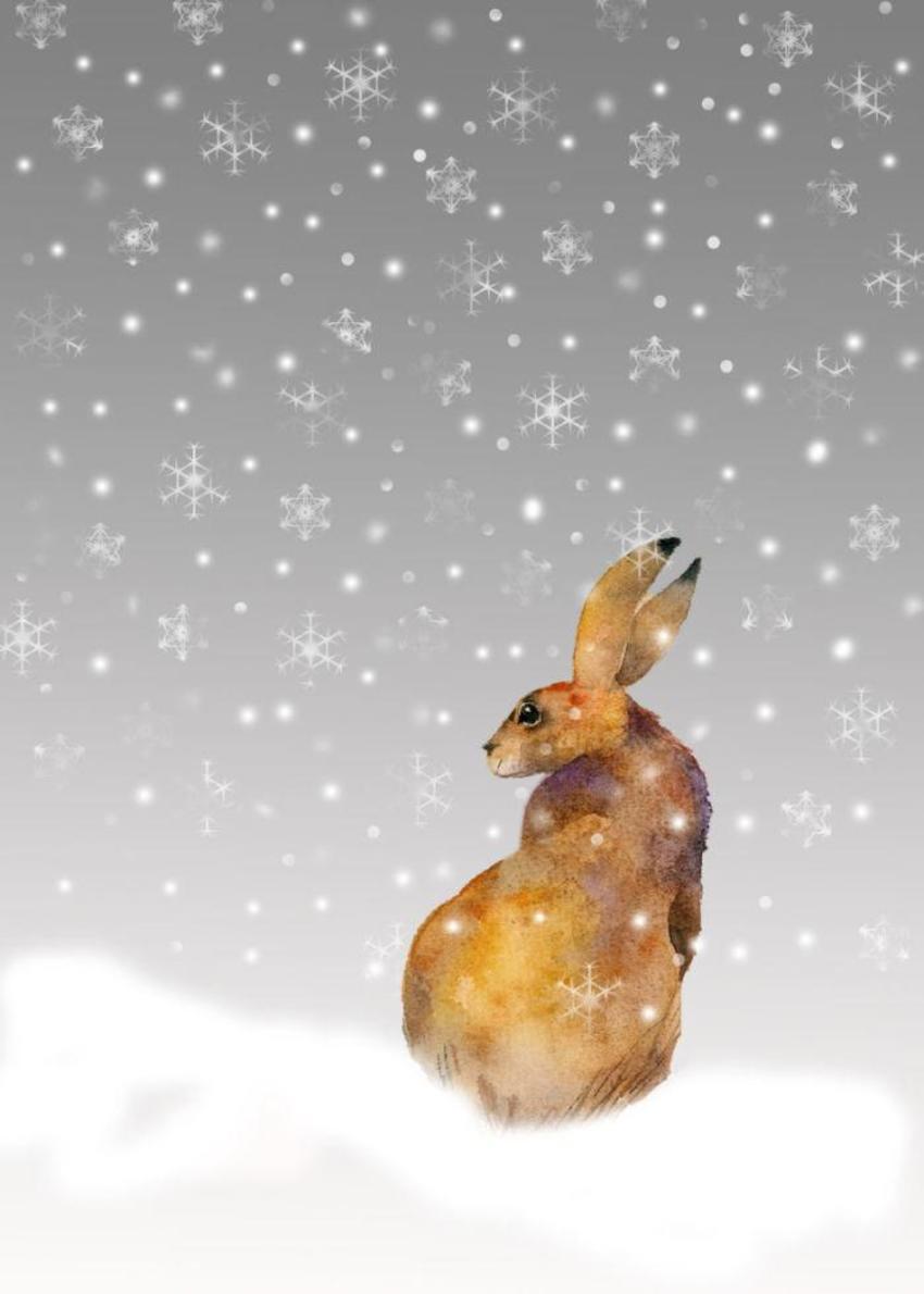 Snowflake Hare