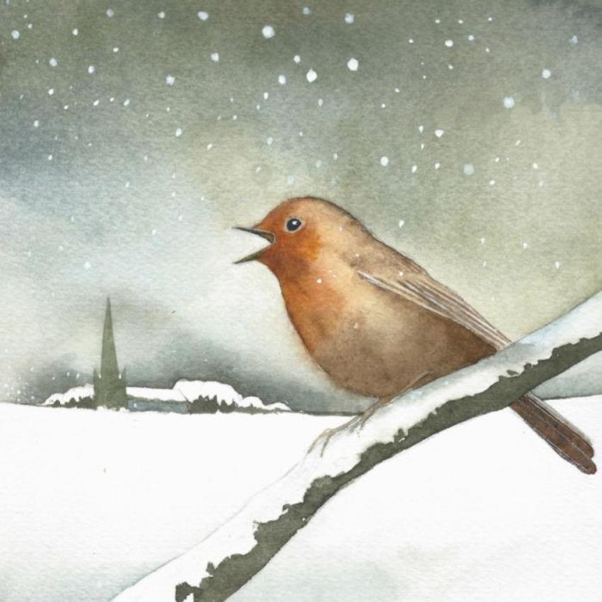 Robin Snow Church Christmas