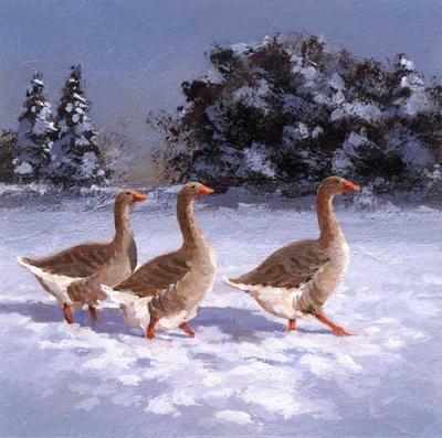 amc-american-buff-geese-in-snow-jpg