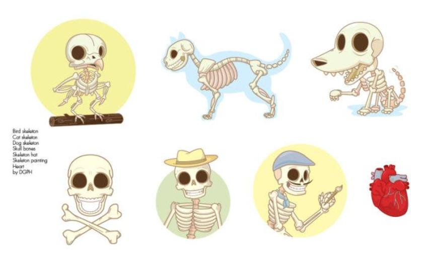 Pag 2 Skeleton Animals And Elements