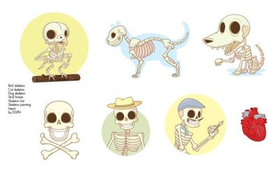 pag-2-skeleton-animals-and-elements