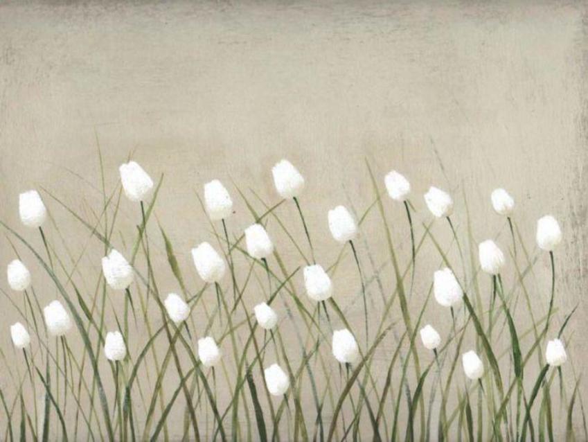 white tulips 1.jpg