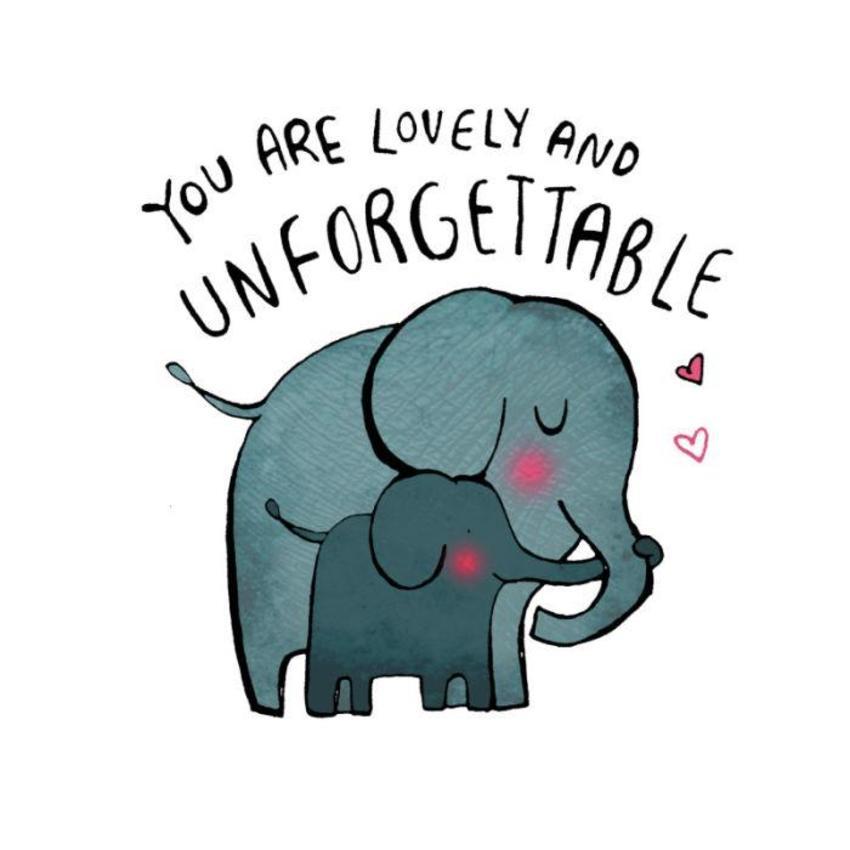 Elephants Love.jpg