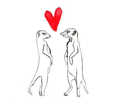 mearkat-love-jpg
